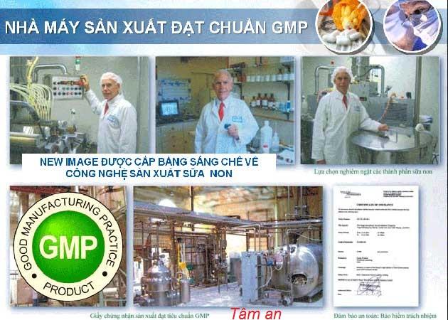 Tiêu chuẩn GMP sữa non